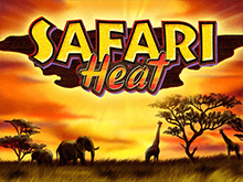 На зеркале Вулкан автомат Safari Heat